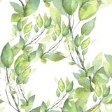 Seamless pattern. Hand painted watercolor illustration. Green branches. stock illustration