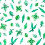 Seamless pattern with hand painted watercolor herbs stock illustration