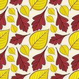 Seamless pattern with hawthorn and linden leaves. vector illustration
