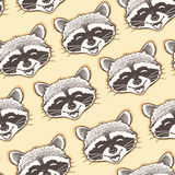 Seamless pattern with head of a happy raccoon.  Royalty Free Stock Photo