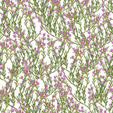 Seamless pattern with heather Stock Photos