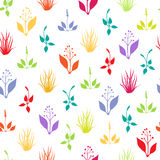 Seamless pattern with herbs Royalty Free Stock Photography