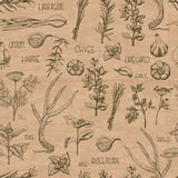 Seamless pattern with herbs and spices on a beige background Royalty Free Stock Image