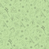 Seamless Pattern with Herbs And Spices. Hand Drawn Seamless Pattern with Herbs And Spices Stock Photos