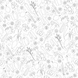 Seamless Pattern with Herbs And Spices. Hand Drawn Seamless Pattern with Herbs And Spices Royalty Free Stock Images