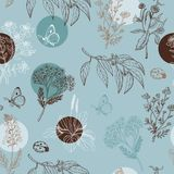 Seamless pattern with herbs. Vector illustration for your design Stock Photos