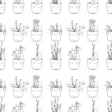 Seamless pattern with herbs and vegetables Stock Photo