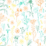 Seamless pattern with herbs and wild flowers. Vector illustration for your design Stock Illustration