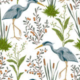 Seamless pattern with heron bird and swamp plants. Royalty Free Stock Photos