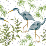 Seamless pattern with heron bird and swamp plants. Royalty Free Stock Images