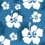 Seamless pattern with Hibiscus flower Stock Photo