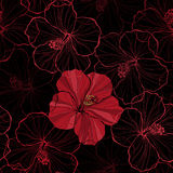 Seamless pattern with hibiscus flowers. Bright endless background with hibiscus flowers Stock Photo