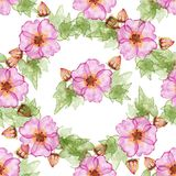 Seamless pattern with hibiscus flowers. Seamless pattern with hibiscus flowers, buds and leaves Royalty Free Stock Image
