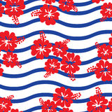 Seamless pattern  Hibiscus flowers. Vector Stock Image