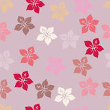 Seamless pattern. hibiscus flowers.violet background Stock Photos