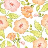 Seamless pattern with hibiscus. vector illustration