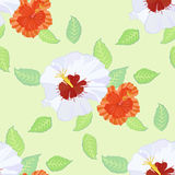 Seamless pattern with hibiscus Stock Photo