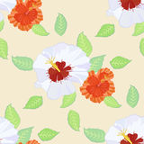 Seamless pattern with hibiscus Stock Images