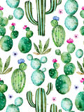 Seamless pattern with high quality hand painted watercolor cactus plants and purple flowers Stock Photos