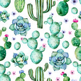 Seamless pattern with high quality hand painted watercolor cactus plants,succulents and purple flowers. Stock Photos