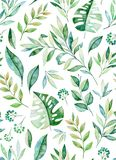 Seamless pattern with high quality hand painted watercolor tropical leaves. stock illustration