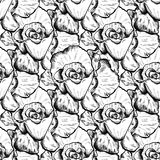 Seamless pattern of highly detailed hand drawn roses isolated on white background. Vector. Seamless pattern of highly detailed hand drawn roses isolated on white Stock Photos