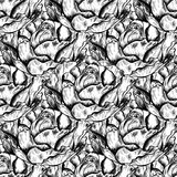 Seamless pattern of highly detailed hand drawn roses isolated on white background. Vector. Seamless pattern of highly detailed hand drawn roses isolated on white Stock Images