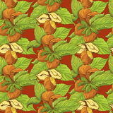 Seamless pattern with highly detailed handdrawn hazelnuts Stock Photography