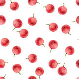 Seamless pattern with holly berries Royalty Free Stock Photography