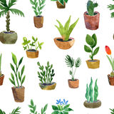 Seamless pattern with home plants Stock Images