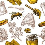 Seamless Pattern with honey, bee, hive, clover, spoon, cracker, honeycomb. Royalty Free Stock Photo