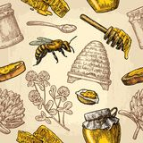 Seamless Pattern with honey, bee, hive, clover, spoon, cracker, honeycomb. Seamless Pattern with honey, bee, hive, clover, spoon, cracker, bread and honeycomb royalty free illustration