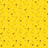 Seamless pattern honey comb. Royalty Free Stock Photo