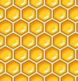 Seamless pattern with honeycombs. Stock Photography