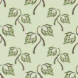 Seamless pattern with hop Royalty Free Stock Images