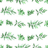 Seamless pattern horizontal green leaves on a white background. Watercolor royalty free stock photo