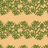 Seamless pattern with horizontal mistletoe twigs Stock Image