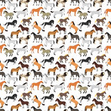 Seamless pattern with horse in flat style. Animal vector design wallpaper stallion textile. Cartoon pony drawing cute abstract race farm mare. Flat mammal Royalty Free Stock Photography