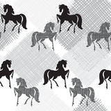 Seamless pattern with horses. Monochrome  illustration. Stock Photos