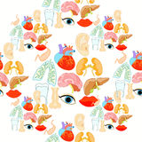 Seamless pattern with a human heart organ, lungs, liver, brain, Stock Images