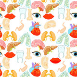 Seamless pattern of human organs in the body and face. vector il Royalty Free Stock Photos