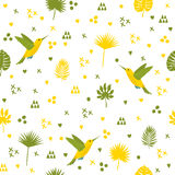 Seamless pattern with hummingbird and leaves. Cute background. With decorative elements. Vector illustration Royalty Free Stock Photo