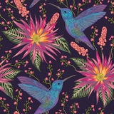 Seamless pattern with hummingbird, tropical flowers,berries and leaves. Exotic flora and fauna. Vintage hand drawn vector illustration in watercolor style Royalty Free Stock Photography