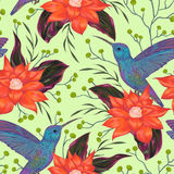 Seamless pattern with hummingbird, tropical flowers,berries and leaves. Exotic flora and fauna. Vintage hand drawn vector illustration in watercolor style Royalty Free Stock Photo