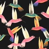 Seamless pattern with hummingbirds stock illustration