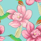Seamless pattern with hummingbirds and orchids vector illustration