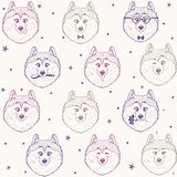 Seamless pattern husky. Beautiful seamless pattern background with cute and funny husky dog. Vector illustration Royalty Free Stock Image