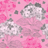 Seamless pattern with hydrangea flowers Stock Photography