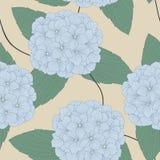 Seamless Pattern of Hydrangeas Stock Images