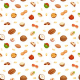 Seamless pattern with illustrations of nuts vector. Stock Images